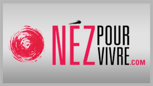 logo_npv